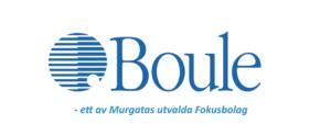 Boule logo png logotype
